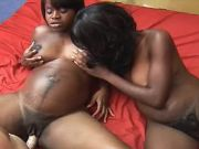 Black pregnant girls fucked by guys